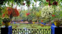 Private Yves Saint Laurent Garden tour and Camel riding in Marrakech desert palm oasis, Marrakech, ...