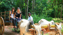 02 Days Private Dambulla & Habarana Tour With Village Experience From Colombo, Colombo, Multi-day ...