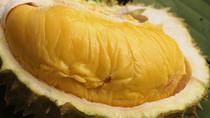 Durian Tasting Tour From Kuala Lumpur (June - September 2018), Kuala Lumpur, Food Tours