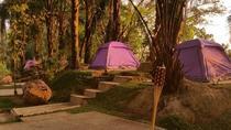 Eco tents at Tadom Hill Resort, Kuala Lumpur, Multi-day Tours