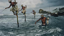 Fishing Village & Mangrove Tour Experince at Negombo (Starting from Colombo), Colombo, Day Trips