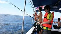 Half Day Fishing Trip at South China Sea from Kota Kinabalu, Kota Kinabalu, Day Trips