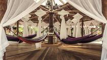 Hammock Spheres at Tadom Hill Resort, Kuala Lumpur, Multi-day Tours