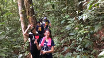Jungle Trek to a Waterfall With Jungle Guide at The Dusun From Kuala Lumpur, Kuala Lumpur, Hiking & ...