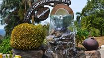 Langkawi City Tour with Agro Park Admission Ticket, Langkawi, City Tours