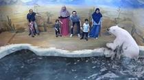 Malacca Illusion 3D Art Museum Admission Tickets, Kuala Lumpur, Museum Tickets & Passes