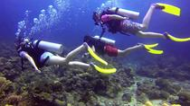 Mantanani Island Diving Paradise (Certified Diver) from Kota Kinabalu, Kota Kinabalu, Day Trips