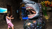 Melaka Pirate Adventure & Shore Oceanarium Tour With Lunch
