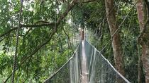 Poring Hot Springs Tour, Kota Kinabalu, Day Trips