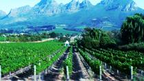 Full Day Wine Tour from Cape Town, Cape Town, Wine Tasting & Winery Tours