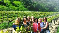 Santa Ynez Valley All-Inclusive Wine Tour, Santa Barbara, Wine Tasting & Winery Tours