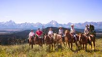 Horseback Riding in the Bridger-Teton National Forest, Jackson Hole, Horseback Riding