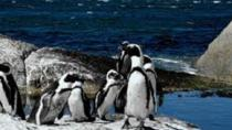 Cape Peninsula Private Day Tour, Cape Town, Private Day Trips