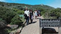 Cape Point and Boulders Beach Day Tour, Cape Town, Cultural Tours