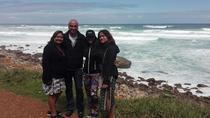 Full-Day Private Tour to Cape Point from Cape Town, Cape Town, Day Trips