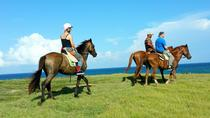 Horseback Riding at Atlantic Shores Beach, St Lucia, Horseback Riding