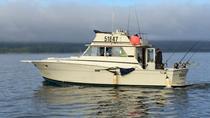 Deluxe 4 Hour Salmon Fishing Charter, Ketchikan, Fishing Charters & Tours