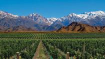 7-Day Mendoza & Santiago de Chile Classic Tour, Mendoza, Multi-day Tours