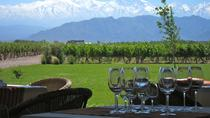 7-Day Mendoza & Santiago de Chile Wine Tour, Mendoza, Wine Tasting & Winery Tours