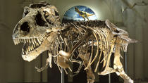 Field Museum of Natural History Admission, Chicago, Museum Tickets & Passes