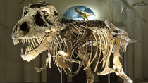 Toegang tot het Field Museum of Natural History, Chicago, Museum Tickets & Passes