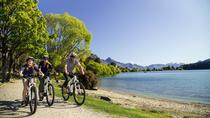Full-Day Queenstown Electric Mountain Bike Rental, クイーンズタウン