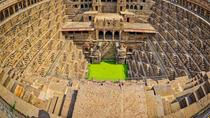 Monkey Temple and Abhaneri Step Well Day Tour, Jaipur, Cultural Tours