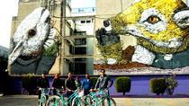 Mexico City Urban Art Bike Tour in Open Gallery