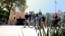Mexico City Urban Art Bike Tour in Open Gallery, Mexico City, Bike & Mountain Bike Tours