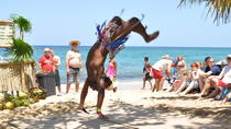 Island Tour and Bamboo Beach Break, Ocho Rios, Half-day Tours