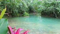Reggae Hill and Aqua Tubing Adventure from Negril, Negril, Half-day Tours