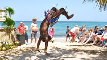 Shore Excursion: Island Tour and Bamboo Beach in Ocho Rios, Ocho Rios, Half-day Tours