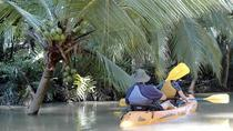 Mangrove monkey land on kayak or motor boat, Quepos, Kayaking & Canoeing