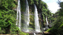 4-Day Jungle Tour to the Amazon from Bogota, Bogotá, Multi-day Tours