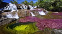 Caño Cristales (Rainbow River) from Bogotá 3-Day with English Guide, Bogotá, Multi-day Tours