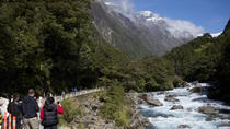Milford Sound Scenic Private Tour, Queenstown, Private Sightseeing Tours