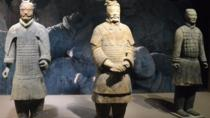 One Day Private Tour of Terracotta Warriors and Horses Museum, Big Wild Goose Pagoda, and Muslim ...