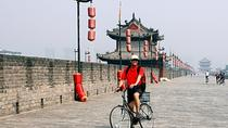 One Day Private Walking Tour in the Old City Area of Xi an, Xian, Walking Tours