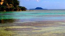 Full-Day Chief Roi Mata Domain, Artok Island and Rainforest Tour of Vanuatu, Port Vila, Full-day...