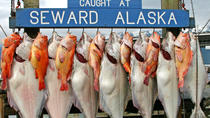 Seward Day Tour, Anchorage, Day Trips