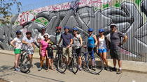The Surprising Bronx Bike Tour, New York City, Bike & Mountain Bike Tours
