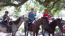 Horse Back Riding and Howler Monkey Sanctuary from Belize City, Belize City, 4WD, ATV & Off-Road ...
