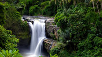 Full Day Ubud Tour with waterfall and kecak fire dance in batubulan village, Bali, Full-day Tours