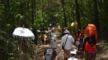Mount Batur Jungle Sunrise Trekking, Bali, 4WD, ATV & Off-Road Tours