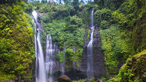 Sekumpul Waterfall Jungle Trekking With Lunch And All Ticket Included, Bali, Private Sightseeing...