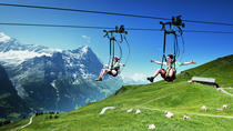Mt First Top Adventure from Lucerne, Lucerne, Attraction Tickets