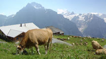 Switzerland Countryside and Traditions Tour from Zurich, Zurich, Overnight Tours