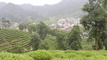 Private Day Trip to Hangzhou and Xitang Water Village from Shanghai, Shanghai, Private Sightseeing...