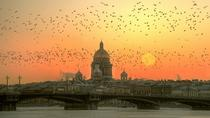 Saint Petersburg Shore Excursion: 1-Day Highlights Tour, St Petersburg, Ports of Call Tours