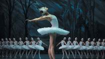 St Petersburg: Swan Lake Ballet at the Hermitage Theater, St Petersburg, Ballet